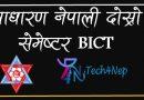 Sadharan Nepali Second Semester BICT Notes